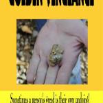 Golden Vengeance high res